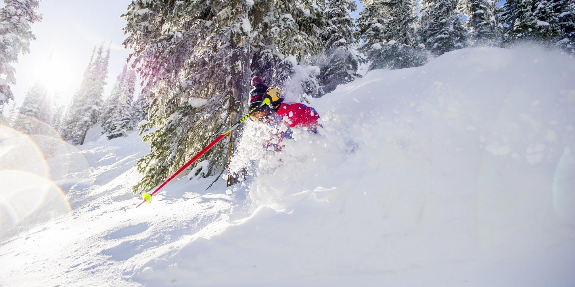 CSIA-Skier-Skiing-Powder-SM